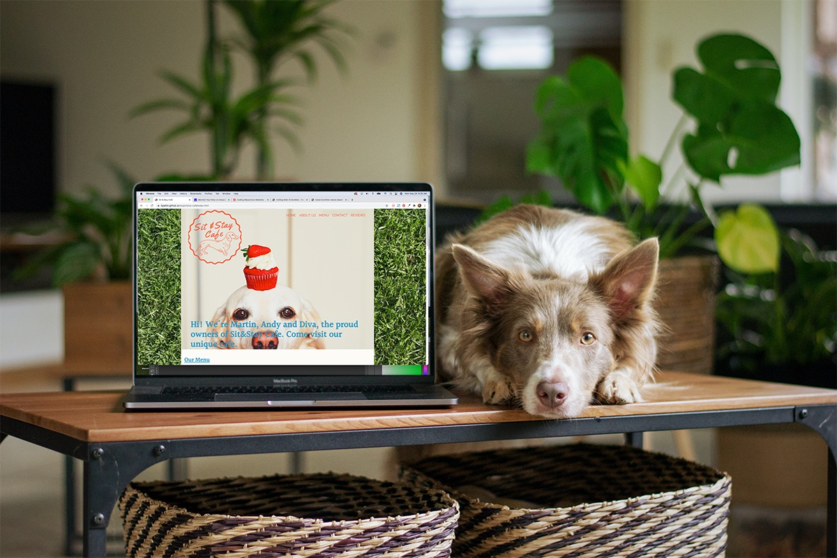 cute dog next to laptop